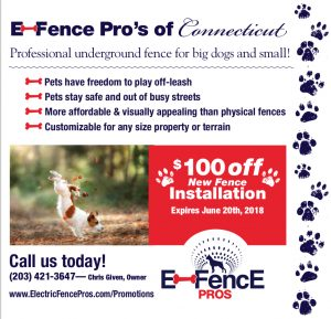 invisible fence coupon